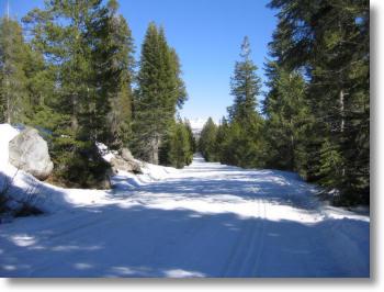 Yosemite Road Conditions