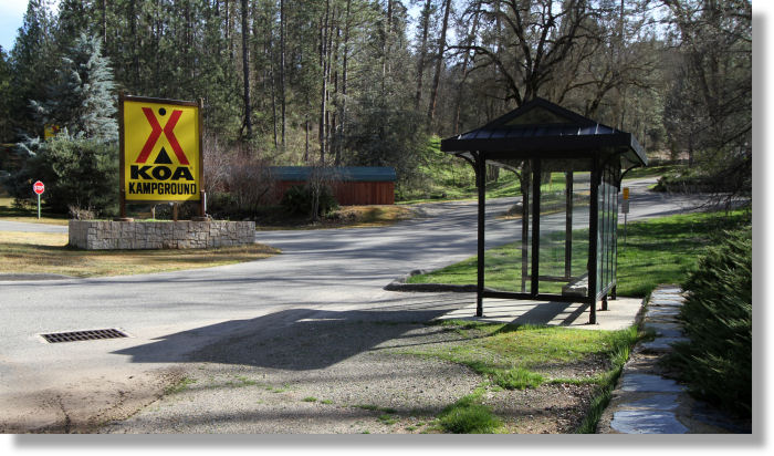 Midpines Lodging Koa Campground