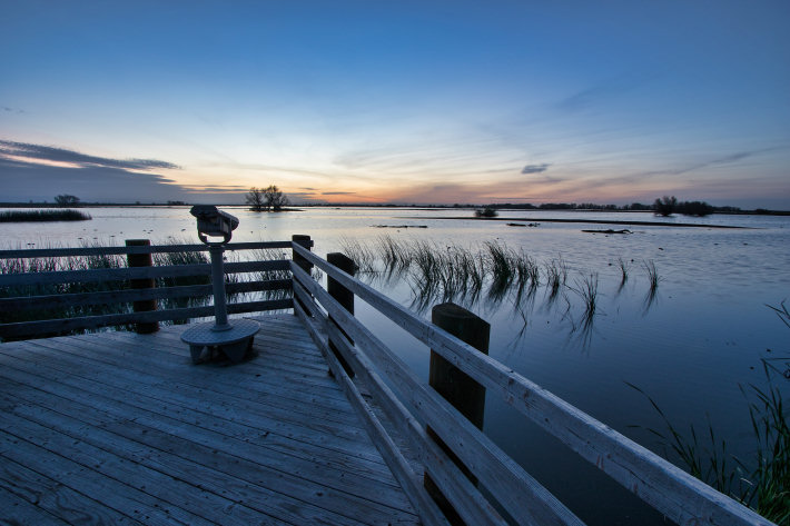 Southeast viewing platform at the Merced National Wildlife Refuge