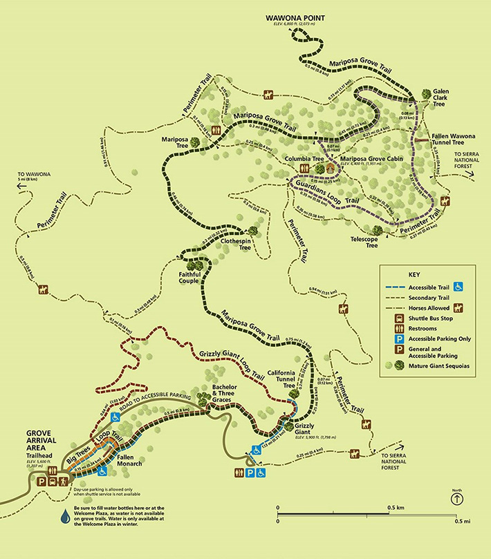 Mariposa Grove Trail Map