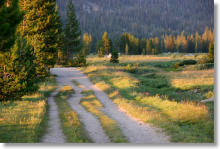 Tuolumne Meadows central trail